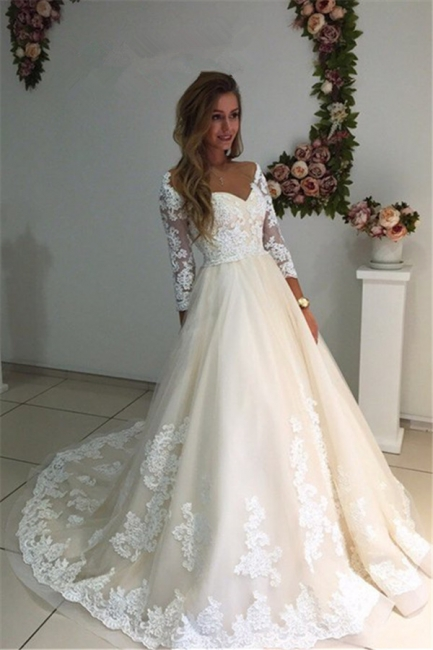 Long Ivory Lace Tulle Sleeves Backless Appliques A-Line Wedding Dresses