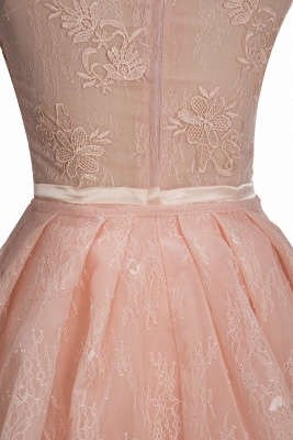 Illusion Overskirt Sheath Popular Unique High-Neck Sleeveless Puffy Lace Prom Dress_8