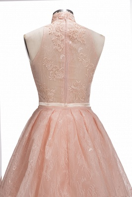 Illusion Overskirt Sheath Popular Unique High-Neck Sleeveless Puffy Lace Prom Dress_11