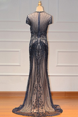 Luxury Beaded Jewel Cap Sleeves Fit and Flare Prom Dresses_24
