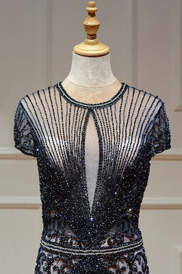 Luxury Beaded Jewel Cap Sleeves Fit and Flare Prom Dresses_26