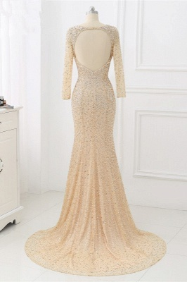 Elegant Light Blue Beaded Round Neckline Fitted Prom Dresses with Long Sleeves_9