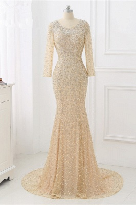 Elegant Light Blue Beaded Round Neckline Fitted Prom Dresses with Long Sleeves_7