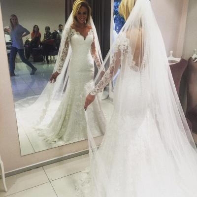 Glamorous Lace V-Neck Mermaid Wedding Dresses with Long Sleeves_3