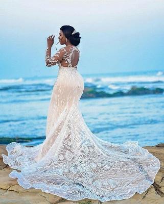 Gorgeous Long Sleeve Applique Beaded Open Back Mermaid Wedding Dress_2