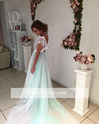 Capped-Sleeves Floral V-Neck Fairy Long Appliques Evening Gowns_4