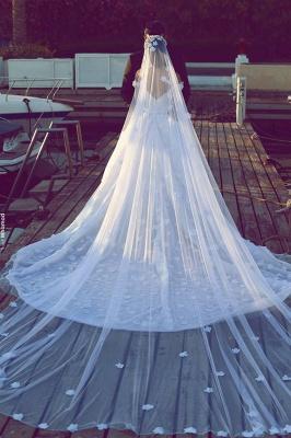 Elegant Off-the-Shoulder Wedding Dresses Open Back Appliques Bridal Gowns_3