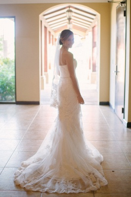 Hot Lace Beach Wedding Dresses For Summer | Mermaid Strapless Bridal Gowns_3