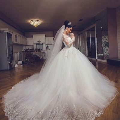 Glamorous Lace Appliques V-Neck Wedding Dresses 2020 Long Sleeves Wedding Ball Gowns_3