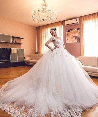 Glamorous Lace Appliques V-Neck Wedding Dresses 2020 Long Sleeves Wedding Ball Gowns_1