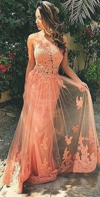 A-Line Sleeveless Tulle Prom Dresses Appliques Backless Party Gowns_1