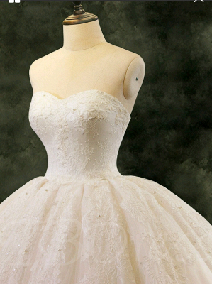 Special Link For A Lace Up Ball Gown Wedding Dresss_4