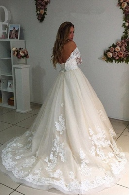 Long Ivory Lace Tulle Sleeves Backless Appliques A-Line Wedding Dresses_3