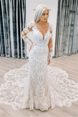 Fitted Lace Wedding Dresses Cheap | Sheer Sleeves Elegant Bridal Gowns_1