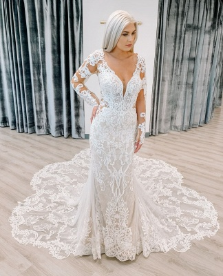 Fitted Lace Wedding Dresses Cheap | Sheer Sleeves Elegant Bridal Gowns_2
