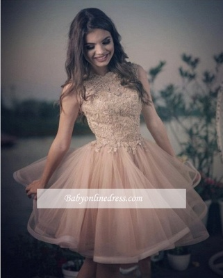 A-line Elegant Lace Tulle Homecoming Dresses_1