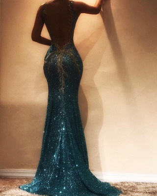 Shiny Sequins Mermaid Evening Dresses | Sexy See-Through Open-Back Long Prom Dresses_3