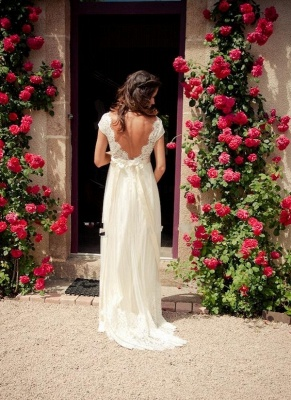 Lace A-line Wedding Dress V Neck Open Back Tropical Elegant Bridal Gowns_2