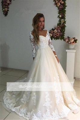 Long Ivory Lace Tulle Sleeves Backless Appliques A-Line Wedding Dresses_1