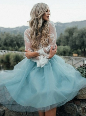 Chic Lace Long Seeves Tutu Tulle A-Line Homecoming Dresses_3